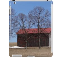 Weathered the Storm iPad Case/Skin
