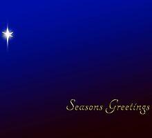 Blue Seasons Greetings by Mark McKinney
