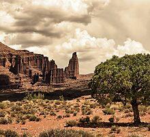 Utah Desert by Bryan Peterson