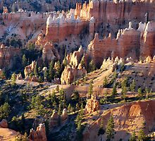 Queen's Garden - Bryce Canyon by Stephen Vecchiotti