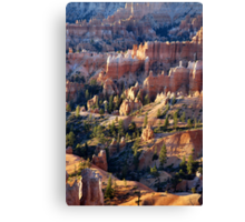 Queen's Garden - Bryce Canyon Canvas Print