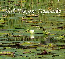 With Deepest Sympathy by Peri