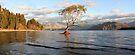 Lake Wanaka, South Island, New Zealand by Michael Boniwell