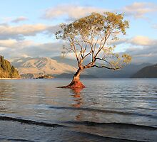 Lake Wanaka, South Island, New Zealand by Michael Boniwell