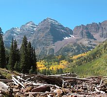 Fall at Maroon Bells  by Luann wilslef