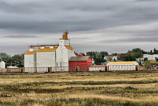 Gull Lake, Saskatchewan Grain Elevator #2 by Vickie Emms