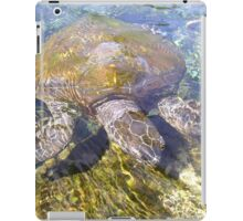 Sea Turtle, HD Photograph iPad Case/Skin