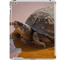Pond Tortoise, HD Photograph iPad Case/Skin