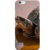 Pond Tortoise, HD Photograph iPhone Case/Skin