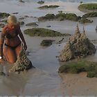 Sandcastle Architect by DAdeSimone