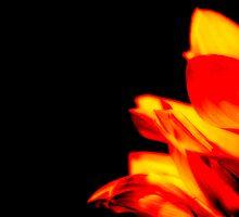 Sun Fire by Donna Adamski