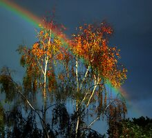 Golden tree at the end of the rainbow by James Cole