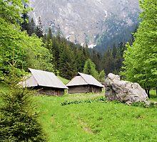 Tatra Mountains in Poland by Artur Bogacki