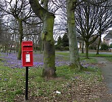 Royal Mail Letter Box by AnnDixon