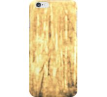 Walk in the Woods iPhone Case/Skin