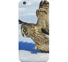 Great Grey Hunting Sequence 3 iPhone Case/Skin