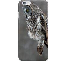 Grey on Grey iPhone Case/Skin