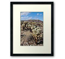 Jumping Cholla Cactus Field Framed Print