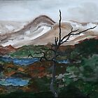Hardangervidda by Oehmig Birgit