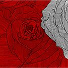 rose outline red by andrew j wrigley