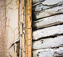Weathered 2 by Paul Davey