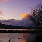 Evening Over Rotorua by lezvee