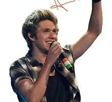 Niall Horan Signature by HollieWild