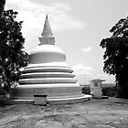 Buddhist Temple in Sri Lanka by daytona235