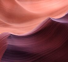 Timeless Waves by Steve  Taylor