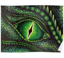 Green Dragon's Eye Poster