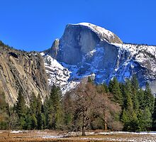 Yosemite Half Dome in Winter by Paul J. Owen