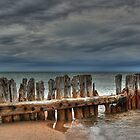 Whitefish Point by Anne Schwaderer