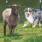 Fetch ~ Australian Shepherd ~ Oil Painting  by Barbara Applegate