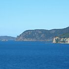 CAPE HUAY - DEVIL'S KITCHEN LOOKOUT Tasmania by MrSnapHappy