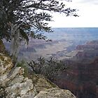 Dusk North Rim Grand Canyon by Bellavista2