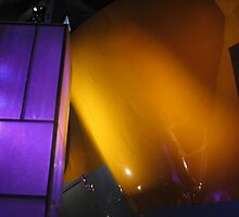 Gehry's Yellow Insides by Jennifer Ferry