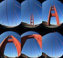 Golden Gate by Aysia Stieb