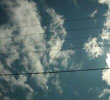 Wire by Aysia Stieb