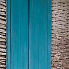Blue door by Naomi Brooks