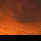 Firey Sky by Karina  Cooper