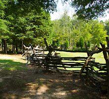 Split Rail Fence by Bob  Reeves
