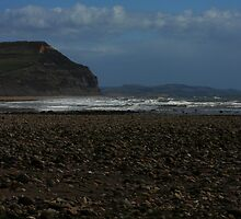 Charmouth Cliffs by Paul  Brewer