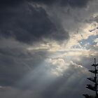 Ray of light by aneubauer