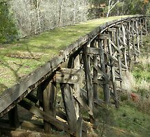Boggy Creek Trestle Bridge by Ludwig Heinrich
