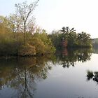 Lake Waban in the Fall by Nupur Nag