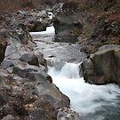 Rapids II by budlee