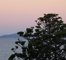 Sunset at Yeppoon, Qld by Sue  Fuller