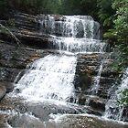 Lady Barron Falls by thebeachdweller