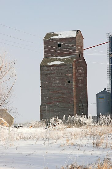 Glass, Manitoba Grain Elevator by Vickie Emms