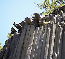 Devils Postpile by Steve Hunter